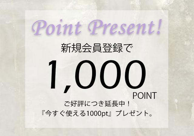 新規会員登録で『 今すぐ使える1,000pt 』プレゼント!